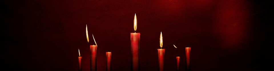 4195 Christmas Candles Feature