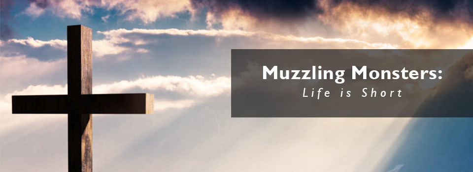 Muzzling-Monsters-life-is-short